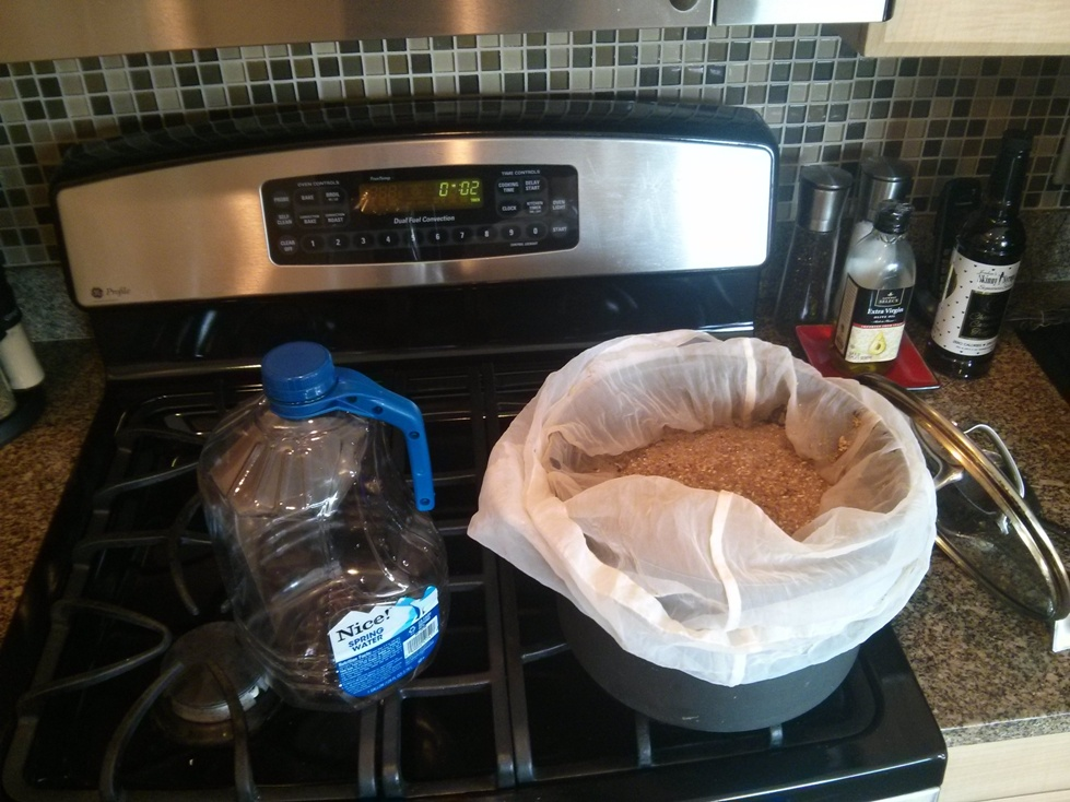 Add grain to the preheated water - aim for 152-154F